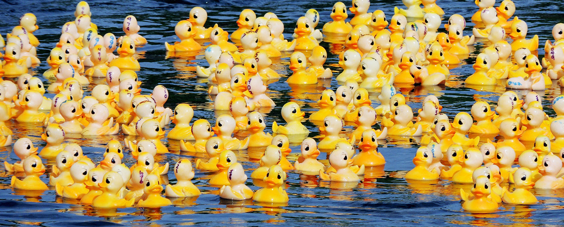 Great South River Duck Race